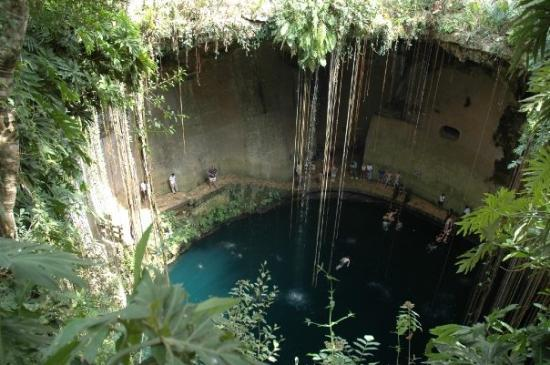 Merida, Mexico: We took a break from the heat at Chi Chenitza & went to Ik Kil cenote. It was AMAZING!!