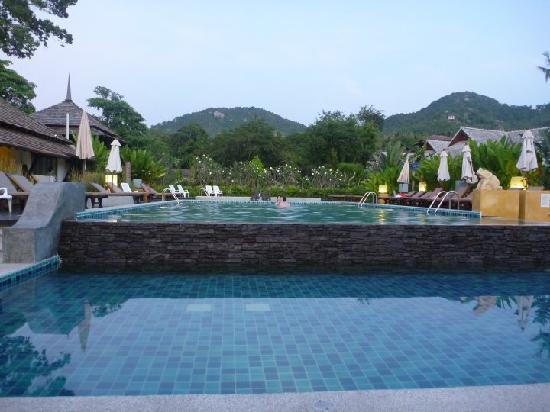 Seashell Resort Koh Tao: nice pool but often full of divers