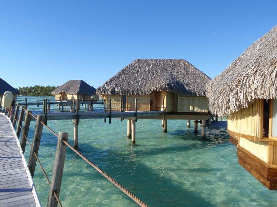 Le Taha'a Island Resort & Spa: Bangalôs