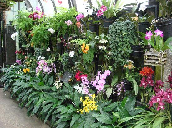 Charmant Longwood Gardens: Orchid House