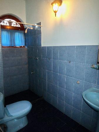 Hotel Dhammika: Shower room