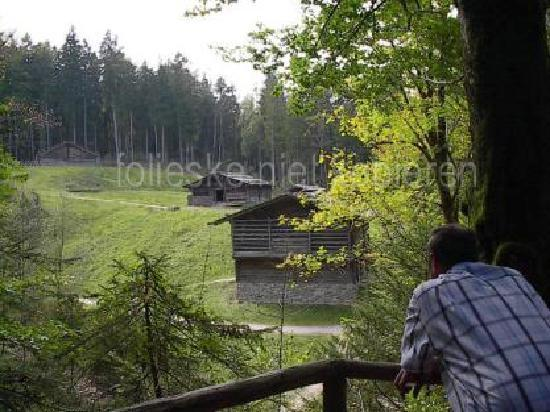 Salzburger Freilichtmuseum: panorama from an 'erlebnispad'