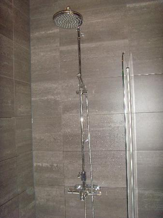 Lydmar Hotel : Shower