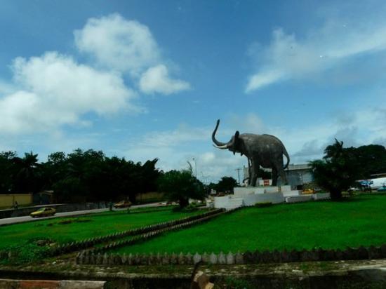 Conakry, Guinée : Le roi de l'Afrique!