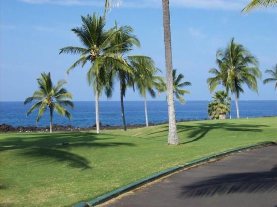 Kailua-Kona, HI: ALOHA!
