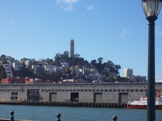 Telegraph Hill : Coit Tower from bay