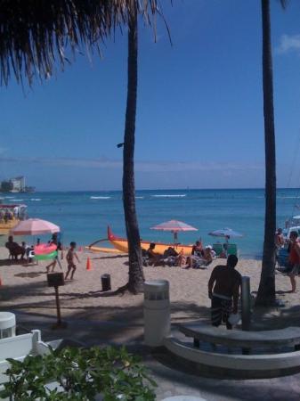 Hilton Waikiki Beach: Oahu Hawaii by Dukes on Waikiki