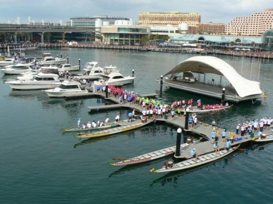 Dragon Boating at Darling Harbour