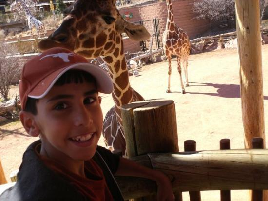 Cheyenne Mountain Zoo: Xavier at the zoo, he just fed the giraffe
