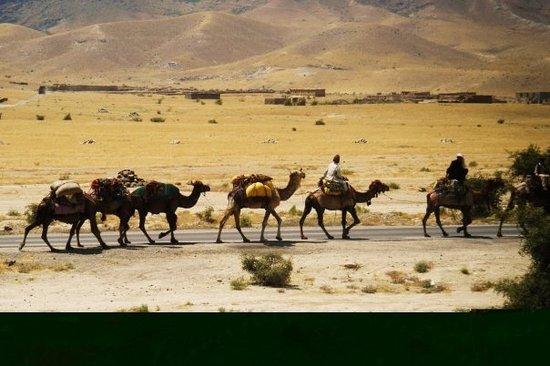 Jalalabad รูปภาพ