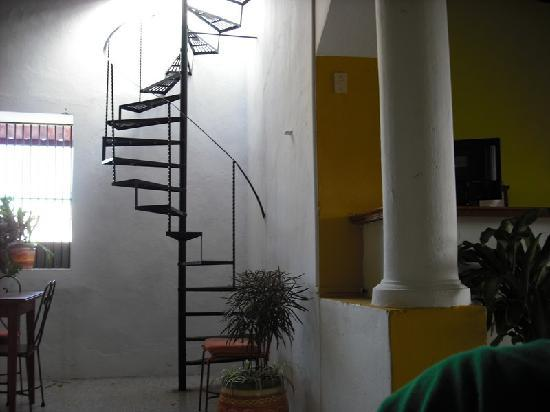 Monkey Hostel - stairs to roof