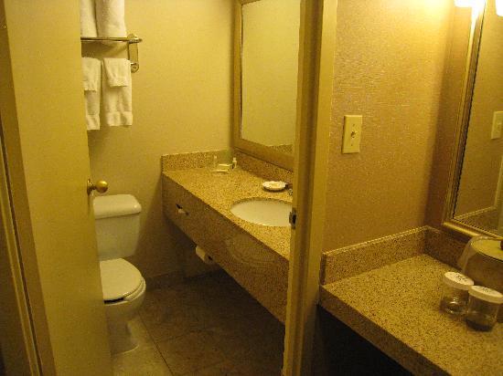 Holiday Inn Toronto International Airport : Bathroom