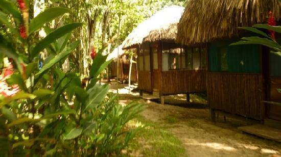 Jungle Palace - cabanas