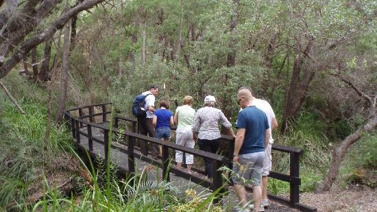 Margaret River Discovery Co. Tours : Heading to the waterfall
