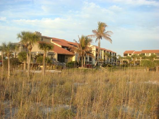 Siesta Dunes Beach Condominiums: From the beach looking toward bldg 5