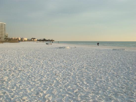Siesta Dunes Beach Condominiums: It really IS the best beach in the lower 48.  Powdered Sugar!