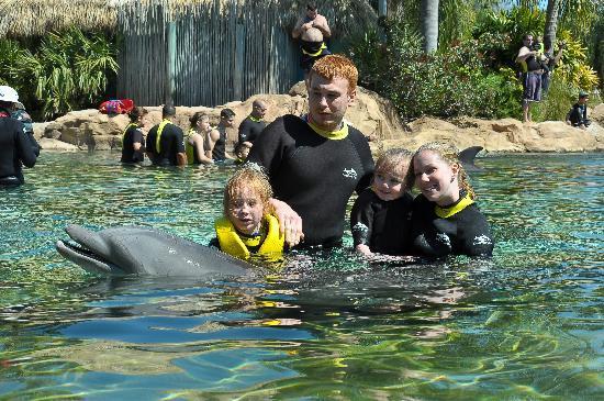 Discovery Cove: dolphin swim
