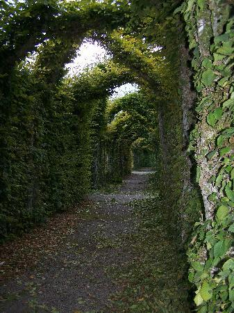 One Of The Views From The Secret Garden Gate Picture Of