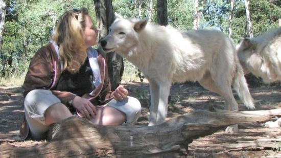 Divide, Колорадо: Getting checked out at the Colorado Wolf and Wildlife Center