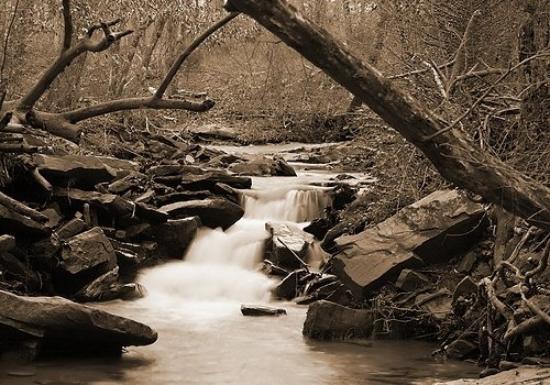 Locust Fork, AL, United States Locust Fork River taken by Lisa Angrisano