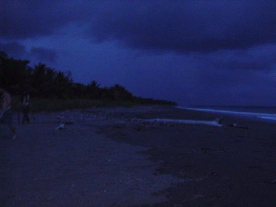Puerto Jimenez Foto