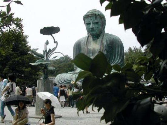 Kotoku-in (Great Buddha of Kamakura): Largest outdoor bronze Buddah.