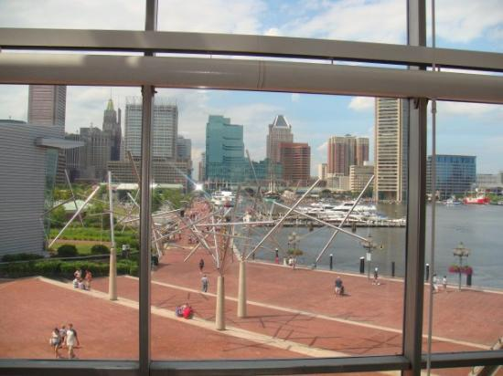 A bird's eye view of the Baltimore Inner Harbor from the Maryland Science Center