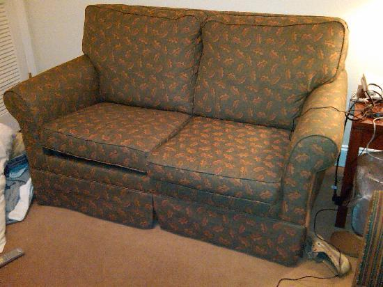 The Acorn Inn of Elon: the pullout sofa