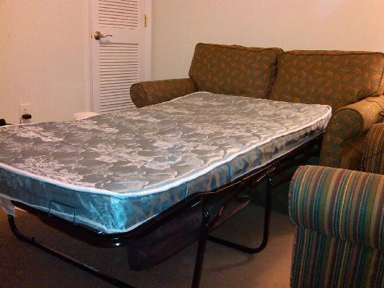 "The Acorn Inn of Elon: the pullout sofa pulled out - 3"" lumpy mattress with springs"