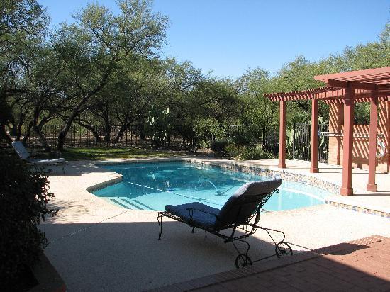 Desert Trails Bed and Breakfast: Pool at Desert Trails B&B