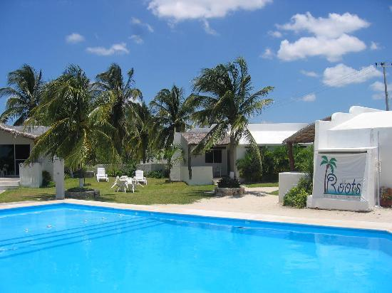 Chelem, Mexico: swimming pool