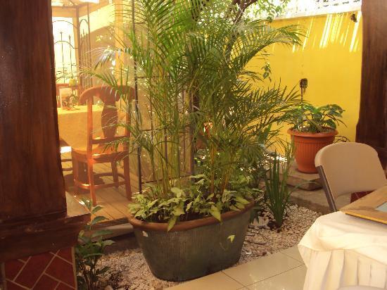The Garden of Hotel Aloha