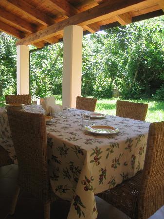 La Vitusa country bed & breakfst: Prima colazione in veranda immersa nel verde