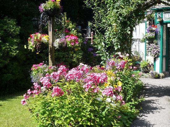 إيليم هاوس: Garden