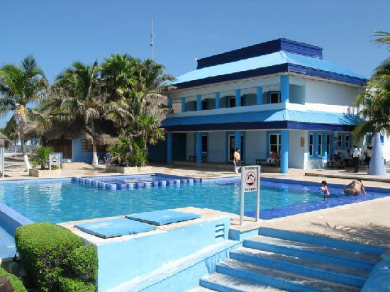 Isla Mujeres, Mexico: Relax in our pool before or after swimming with dolphin
