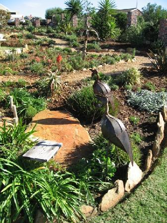 Dolphin View Guesthouse: Gardens