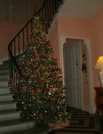 Chateau de Quarante: Superbe sapin Noël