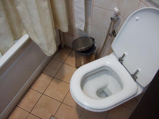 Madaba Inn Hotel: the toilet