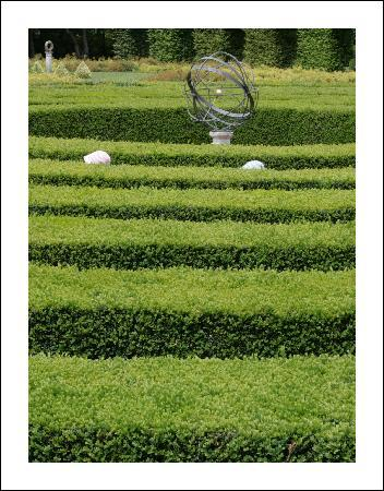 La Garenne family gites: Lost in the maze at the nearby Château de Dampierre sur Boutonne