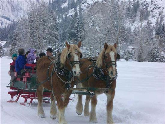 Icicle Outfitters Winter Sleigh Ride: Sleigh Bells in the Icicle Valley
