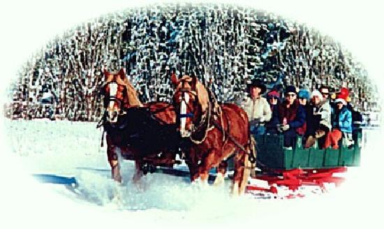 Icicle Outfitters Winter Sleigh Ride : Big Sleighs for Big Groups