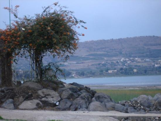 Tiberias, Israel: Early in the morning at the Sea (of Galilee)