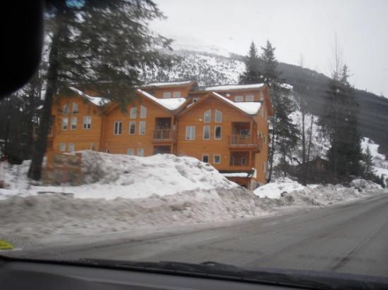 Alyeska Adventures B&B : a real log cabin