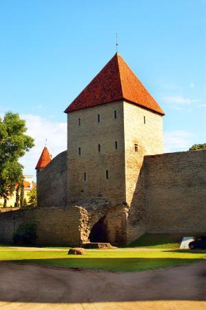 Bymuren: Tallin Old City