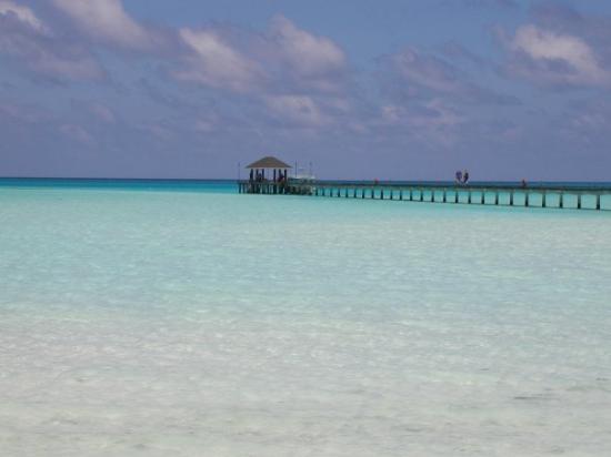 Whale Submarine Maldives: Holiday Island Maldive