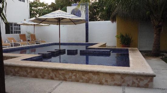 Villa Escondida Cozumel Bed and Breakfast: The pool area