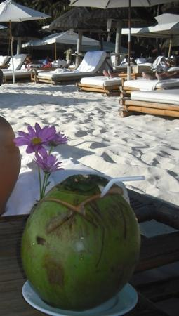 Fridays Boracay: Go Coconut! GO!