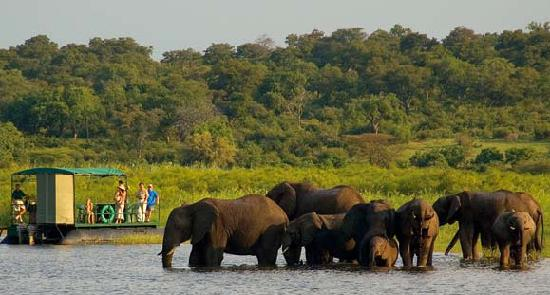 Imbabala Zambezi Safari Lodge: Imbabala Cruise