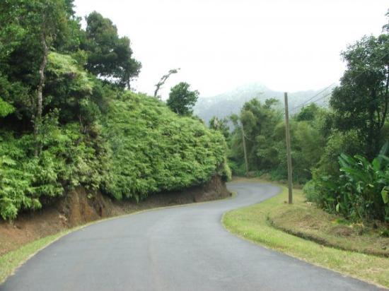 St. George's, Grenada: Roads in Grenada