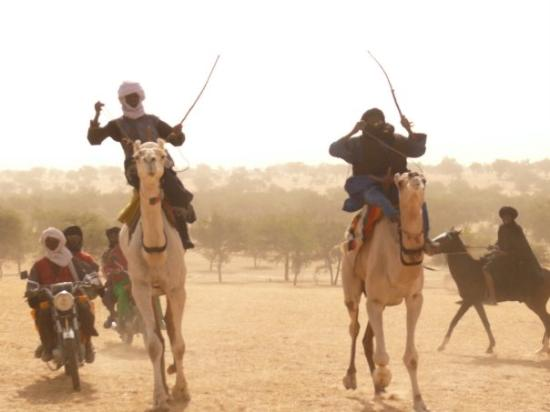 Maradi, Niger: Camel races... I was just in the middle.. Quite scary..